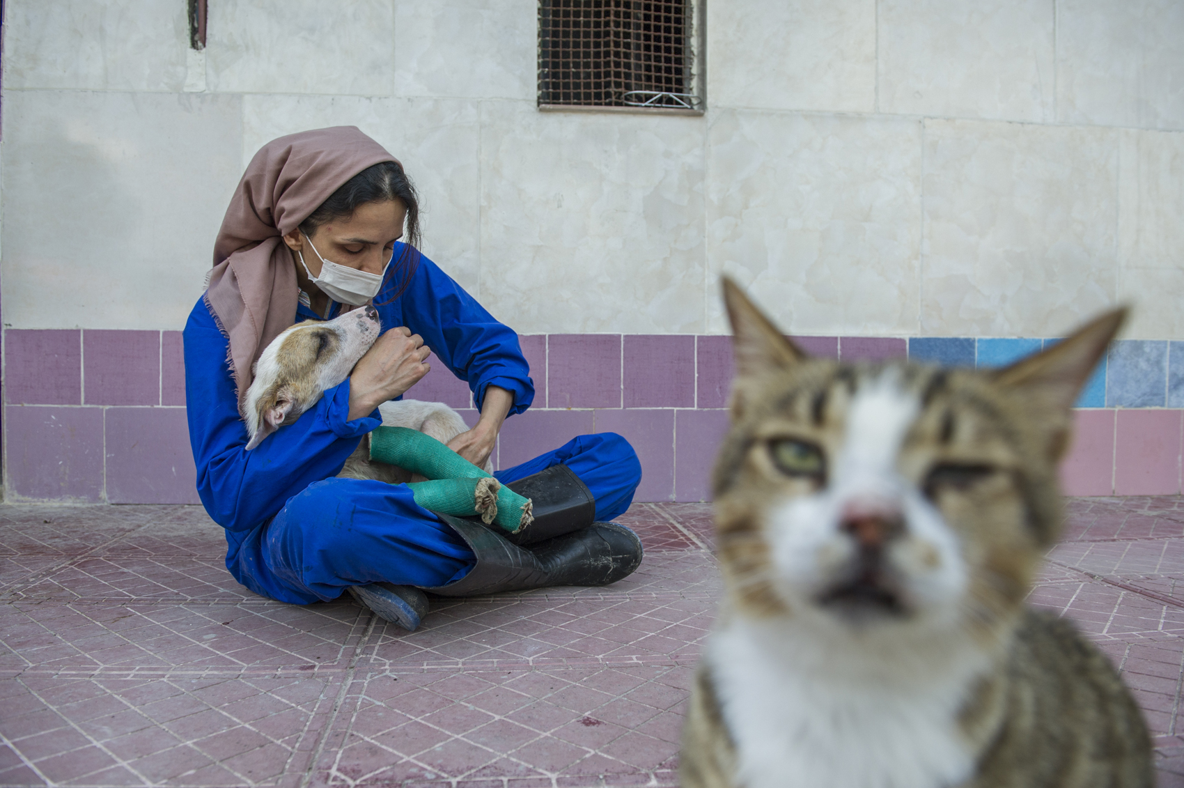 Azadeh, The Animal Rescuer